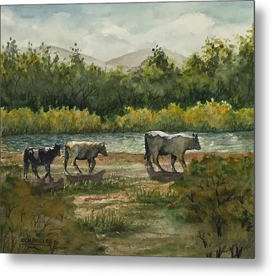 Are We There Yet? Metal Print by Don Bosley