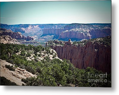 Arizona Desert Landscape Metal Print by Ryan Kelly