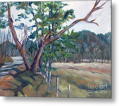 Around Cades Cove Metal Print by Janet Felts