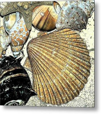 Art Shell 2 Metal Print by Stephanie Troxell