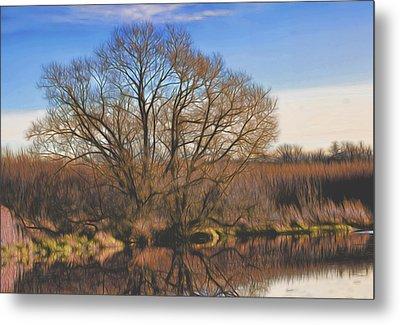 Artistic Creek Tree  Metal Print by Leif Sohlman