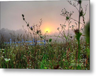As Morning Comes Metal Print by Robert Pearson
