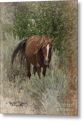 As The Wind Blows Metal Print by Bobbee Rickard