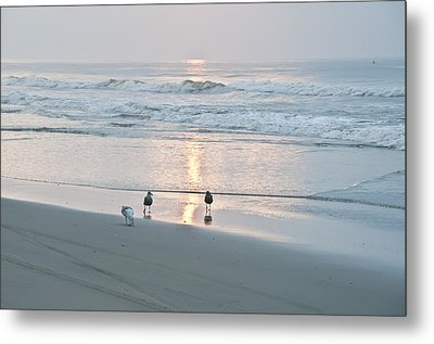 At The Start Of The Day Metal Print by Bill Cannon