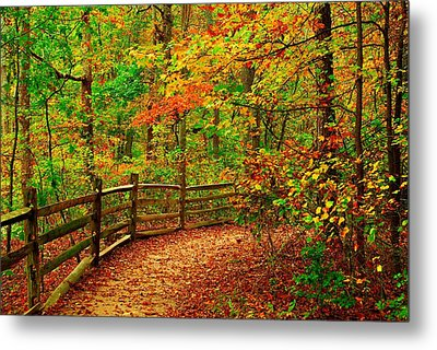 Autumn Bend - Allaire State Park Metal Print by Angie Tirado