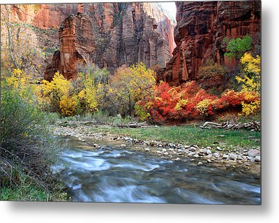Autumn Colors At Sinawava Temple  Metal Print by Pierre Leclerc Photography