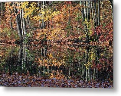 Autumn Colors Reflect Metal Print by Karol Livote