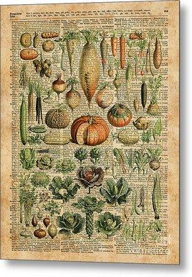 Autumn Fall Vegetables Kiche Harvest Thanksgiving Dictionary Art Vintage Cottage Chic Metal Print by Jacob Kuch