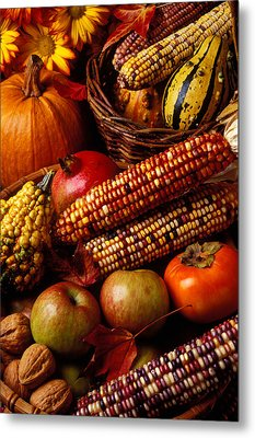 Autumn Harvest  Metal Print by Garry Gay