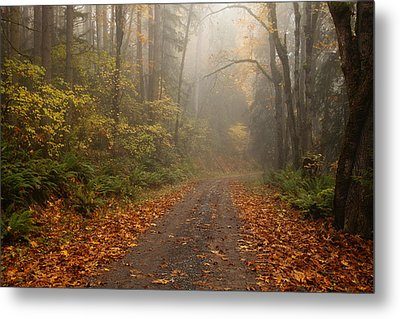 Autumn Lane Metal Print by Mike  Dawson