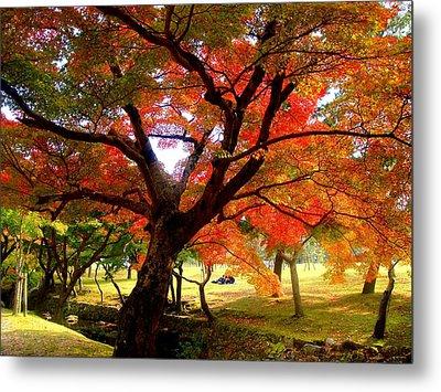 Autumn Leaves 2 Metal Print by Roberto Alamino