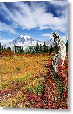 Autumn Majesty Metal Print by Mike  Dawson