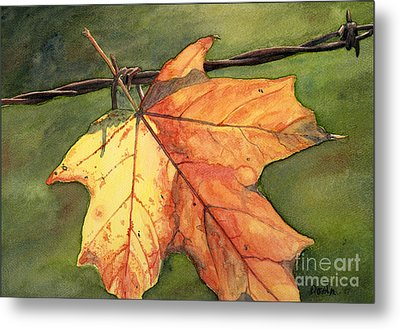 Autumn Maple Leaf Metal Print by Antony Galbraith