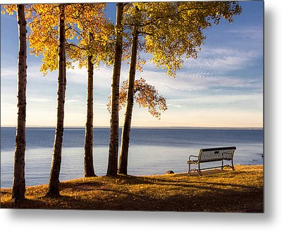 Autumn Morn On The Lake Metal Print by Mary Amerman