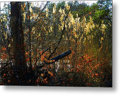 Autumn On The Sough Metal Print by Julie Dant