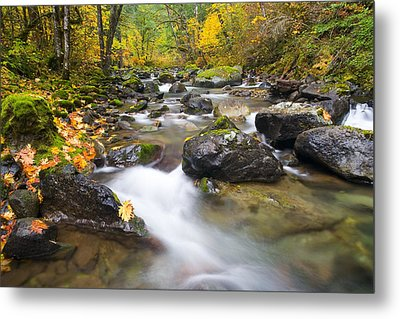 Autumn Passing Metal Print by Mike  Dawson