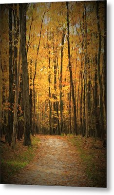 Autumn Peace Metal Print by Dan Sproul