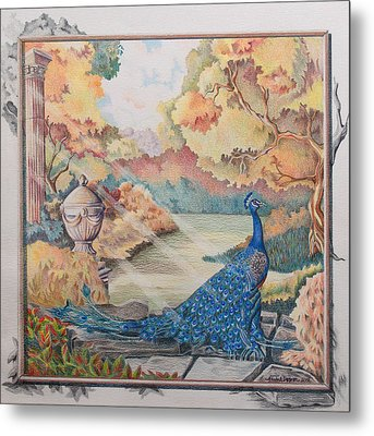 Autumn Peacock Metal Print by Joyce Hutchinson