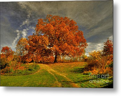 Autumn Picnic On The Hill Metal Print by Lois Bryan