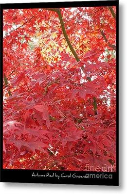 Autumn Red Poster Metal Print by Carol Groenen