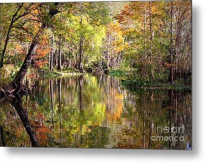 Autumn Reflection On Florida River Metal Print by Carol Groenen