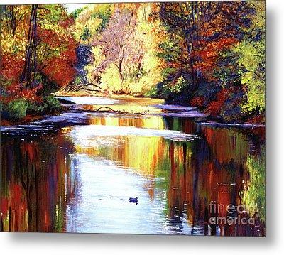 Autumn Reflections Metal Print by David Lloyd Glover
