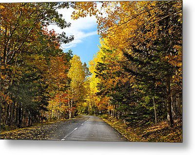 Autumn Scenic Drive Metal Print by George Oze