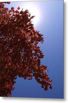 Autumn Sky I Metal Print by Anna Villarreal Garbis