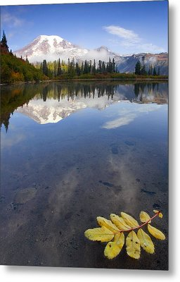 Autumn Suspended Metal Print by Mike  Dawson