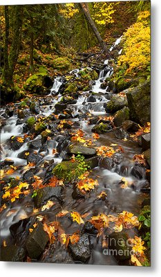 Autumn Tumbles Down Metal Print by Mike  Dawson