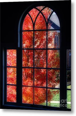 Autumn View Thru A Picture Window Metal Print by Sue Melvin