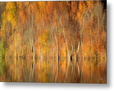 Autumns Final Palette Metal Print by Everet Regal
