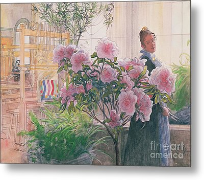 Azalea Metal Print by Carl Larsson