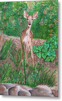 Baby Deer Metal Print by Patty Vicknair