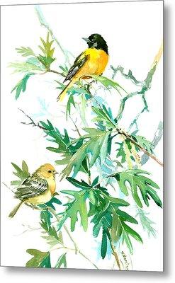 Baltimore Orioles And Oak Tree Metal Print by Suren Nersisyan