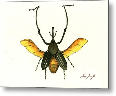 Bamboo Beetle Metal Print by Juan Bosco