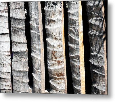 Bamboo Fence Metal Print by Ron Kandt