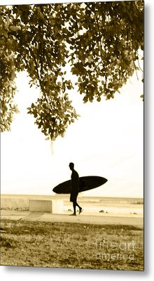 Banyan Surfer - Triptych  Part 3 Of 3 Metal Print by Sean Davey