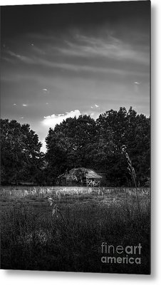 Barn And Palmetto-bw Metal Print by Marvin Spates