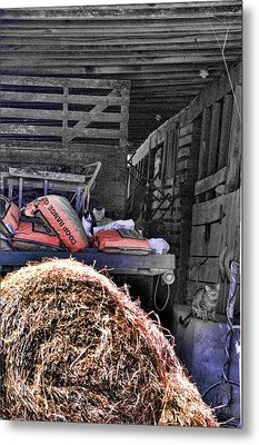 Barn Cats Metal Print by Jan Amiss Photography