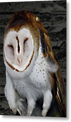 Barn With Owl Metal Print by Debra     Vatalaro