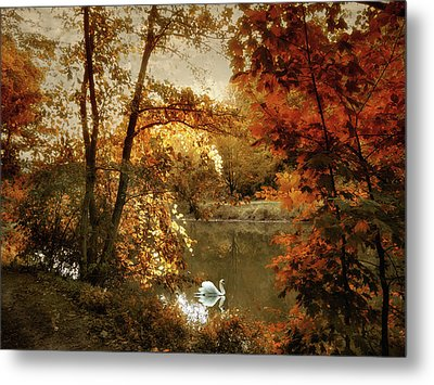 Basking In Autumn Metal Print by Jessica Jenney