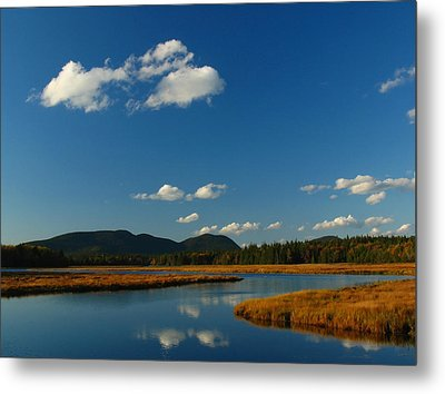Bass Harbor Marsh Metal Print by Juergen Roth