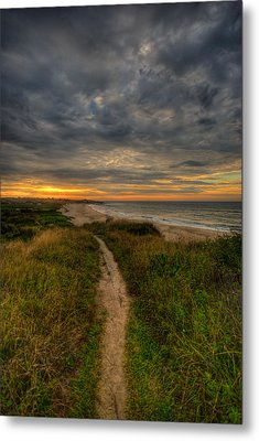 Beach Trail Metal Print by Mike Horvath