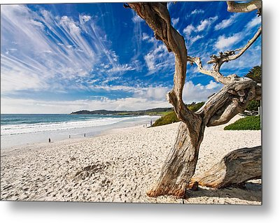 Beach View Carmel By The Sea California Metal Print by George Oze