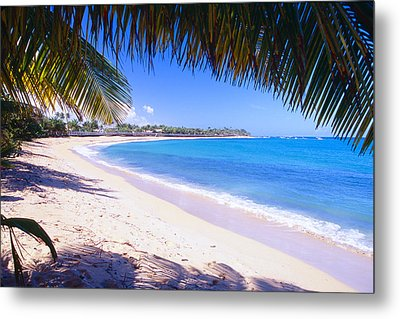Beach View Under A Palm Tree Metal Print by George Oze