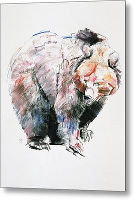 Bear Metal Print by Mark Adlington