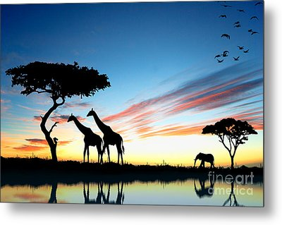 Beautiful  Animals In Safari Metal Print by Boon Mee