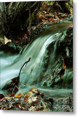Beautiful Creek Metal Print by Mario Brenes Simon