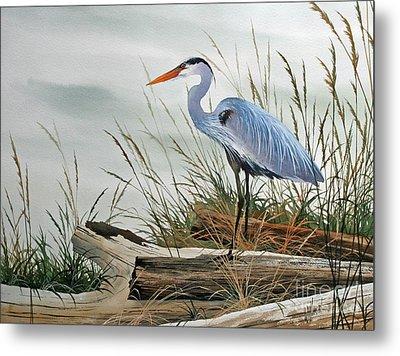 Beautiful Heron Shore Metal Print by James Williamson